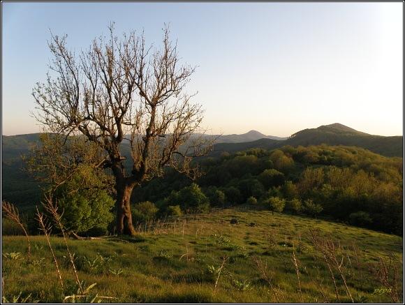 Malé Karpaty od Klokoče