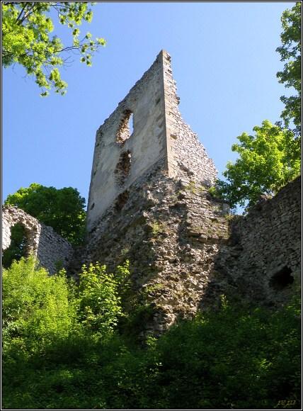 Malé Karpaty. Dobrovodský hrad