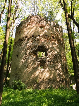 Malé Karpaty, Dobrovodský hrad