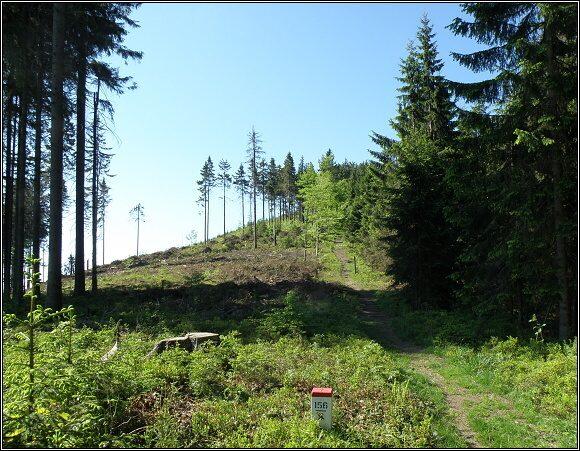 Oravské Beskydy. Les na polské /vpravo/ a slovenské straně hranice