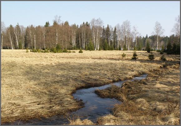 Slavkovský les. Kladská rašeliniště - vrchoviště