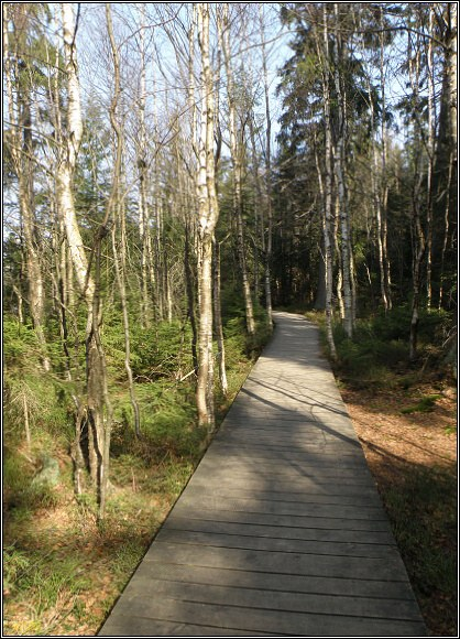 Slavkovský les. Naučná stezka Kladská