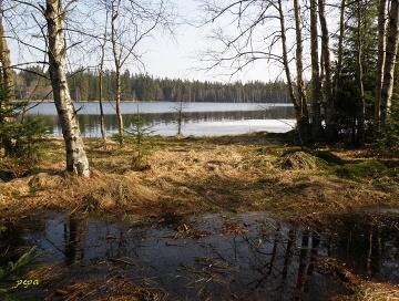 Slavkovský les. Kladská rašeliniště