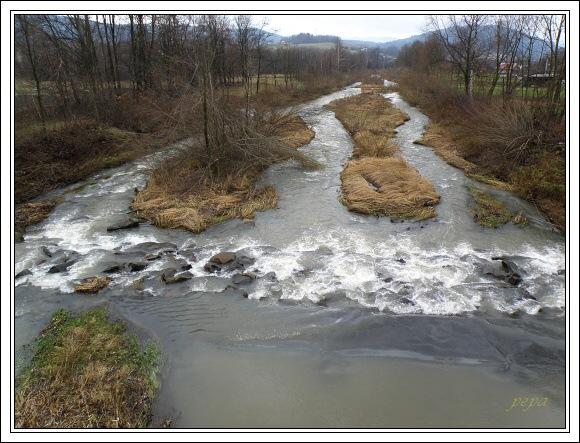 Olše v Bukovci