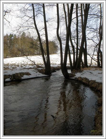 Chebsko. Slatinný potok nad Seebergem