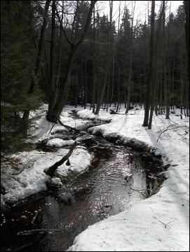 Chebsko, Libský potok