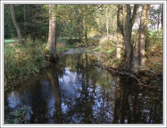 Potok Rokytnice. Nalevo Bavorsko, napravo Sasko