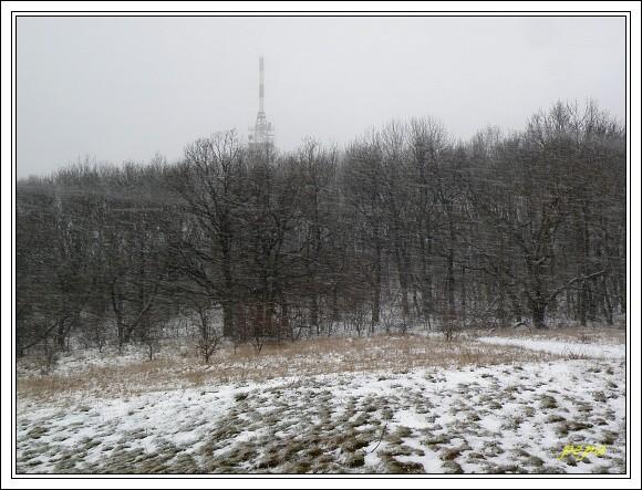 Pálava. Sněhová vánice na Děvíně