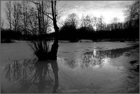 Poodří, © pepa, 9.1.2011