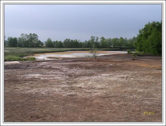 Národní přírodní rezervace SOOS. Vrstva solí na křemelinovém štítu