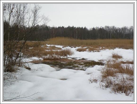 Národní přírodní rezervace SOOS. Jižní bezodtoková oblast