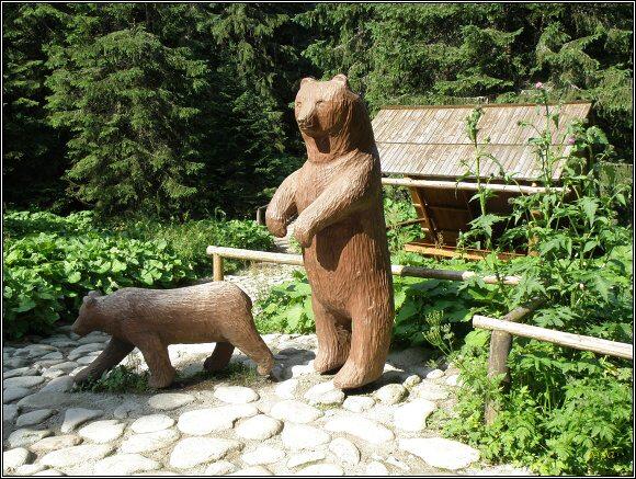 Vysoké Tatry. Jen zlí jazykové tvrdí, že setkání s medvědem jsou nebezpečná...