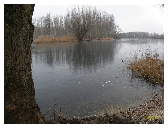 CHKO Dunajské luhy. Bočianske rameno
