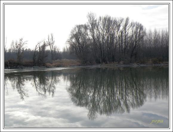 CHKO Dunajské luhy. Tváře lužního lesa