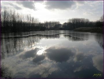 CHKO Dunajské luhy