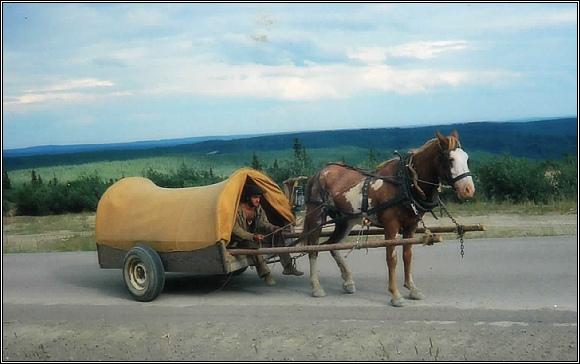 S koňským spřežením na sever