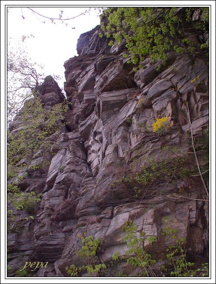 Národní park Podyjí. Skalní bloky u Ledových slují