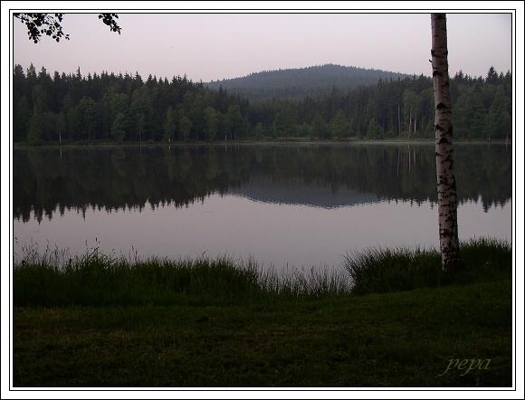 CHKO Žďárské vrchy. Milovský rybník