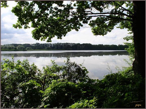 Poodří, Horní Bartošovický rybník