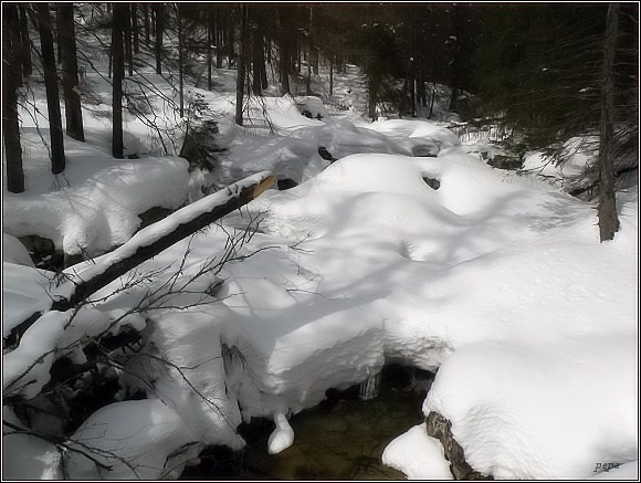 Vysoké Tatry, Studený potok (3. dubna 2012)