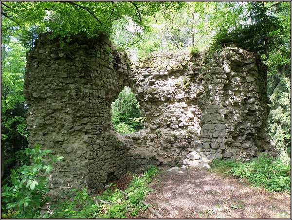 Zřícenina hradu Kynžvart. Zbytky obytného paláce