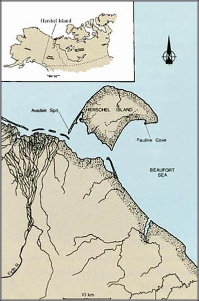 Severní pobřeží Kanady. Herschelův ostrov