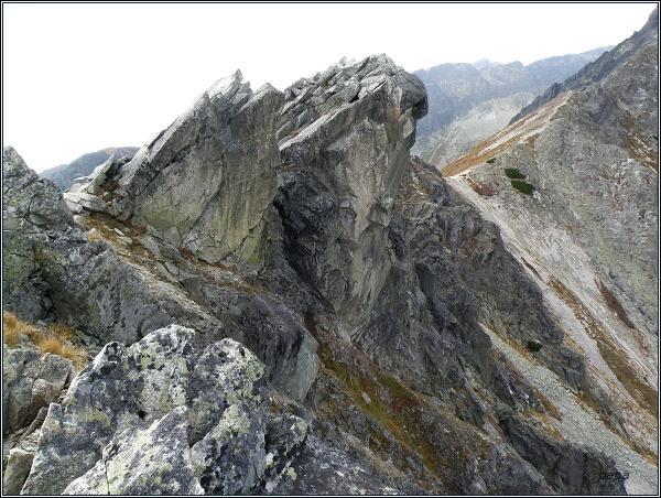 Predné Solisko, vrchol
