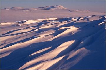 Zimní sibiřská tundra