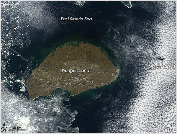 Wrangelův a Heraldův ostrov, satelitní snímek