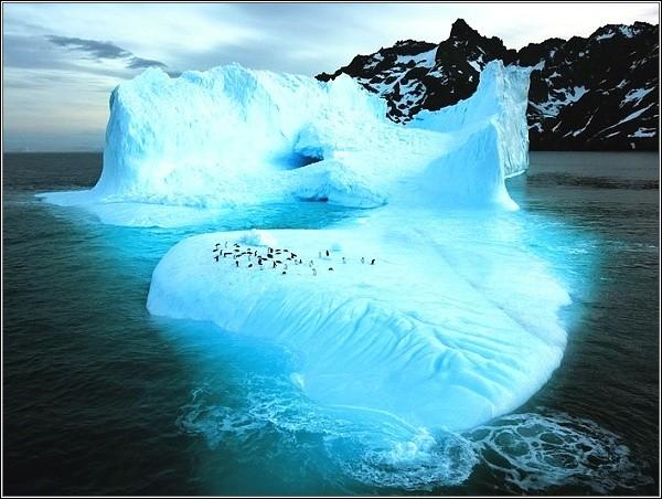 Pobřeží Wrangelova ostrova