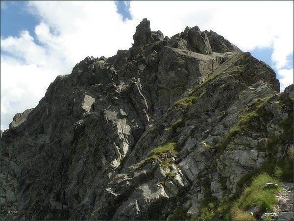 Jastrabia veža  nad Jastrabím sedlom