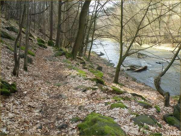 Cesta kopíruje levý břeh řeky a nevzdaluje se od vody víc jak na deset metrů