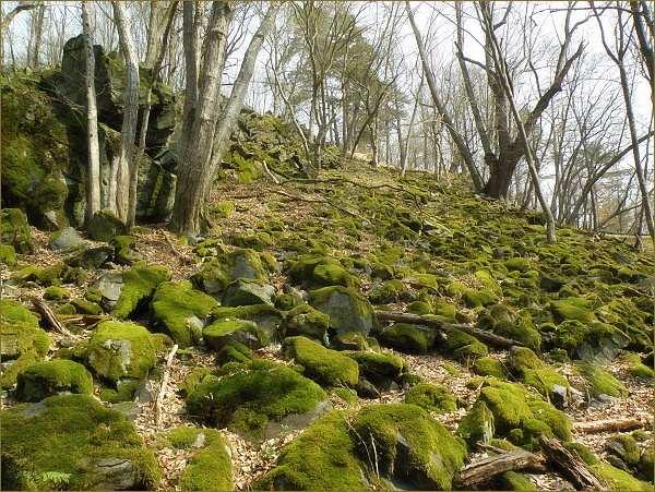 Mechem porostlá kamenná moře ve stráních nad řekou svědčí o vegetační inverzi