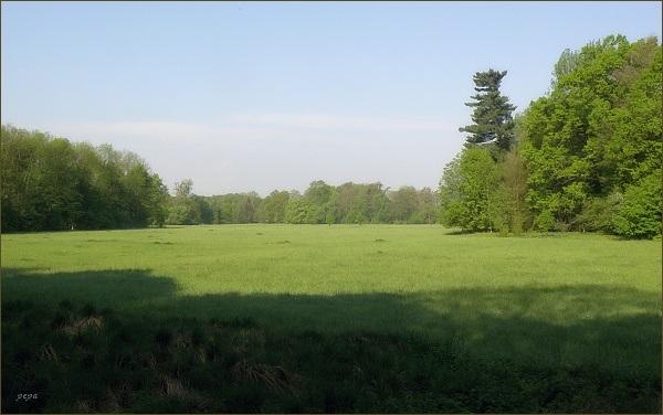 Přírodní rezervace Novozámecké louky