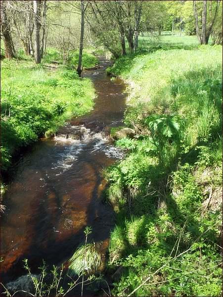 Hranici mezi majetkem kláštera v Teplé a majetkem Rýzmburků tvořil Pramenský potok (Roda)