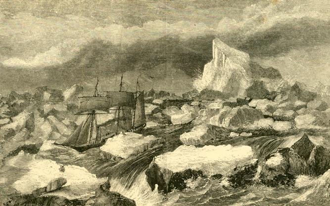 Fox v ledovém sevření
