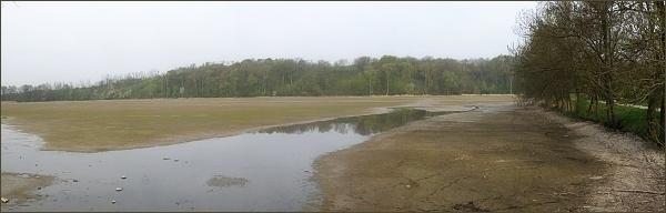 Týnský rybník je vypuštěný