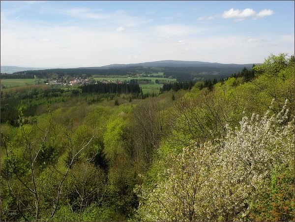 Lesný, nejvyšší vrchol Slavkovského lesa (uprostřed vlevo) a Lysina (zdánlivě nejvyšší) ,druhý nejvyšší vrchol Slavkovského lesa, jen o metr nižší než Lesný