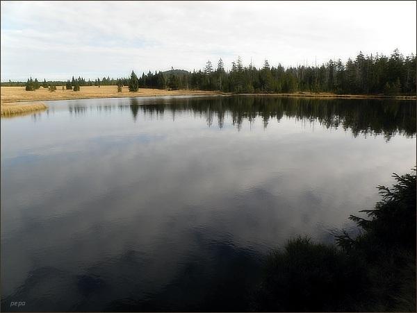 Mrtvý rybník