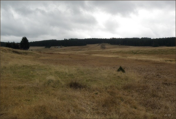 Krajina u osady Jelení