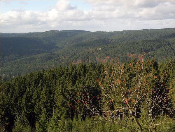 Krušné hory ze Špičáku