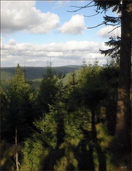 Krušné hory ze Špičáku. V pozadí Auersberg