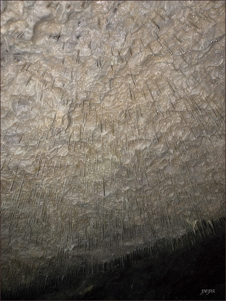 Ochozská jeskyně. Krápníková brčka v Hlavních dómech