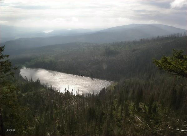 Plešné jezero od Stifterova pomníku. Vpravo Smrčina, vlevo hladina Lipna