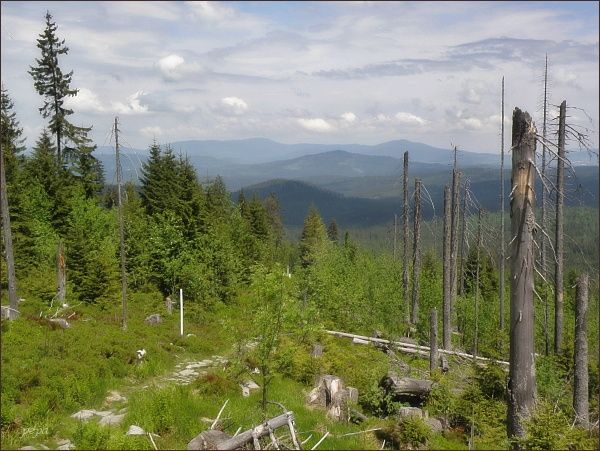 Pohled z Třístoličníku do českého vnitrozemí. Na horizontu Boubín a Bobík