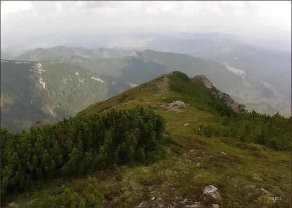 Severovýchodní okraj Wołoszyna. Popaski (starý goralský název tohoto místa, oficiální název tento vrchol nemá)