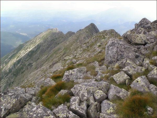 Pohled ze Skr. Wołoszyna: Wierch nad Żlebem Zagonnym, na konci hřebene Turnia nad Dziadem