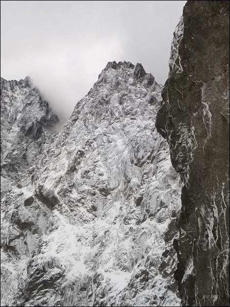Kačací štít zVýchodnej Železnej brány