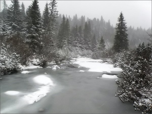 Hincov potok