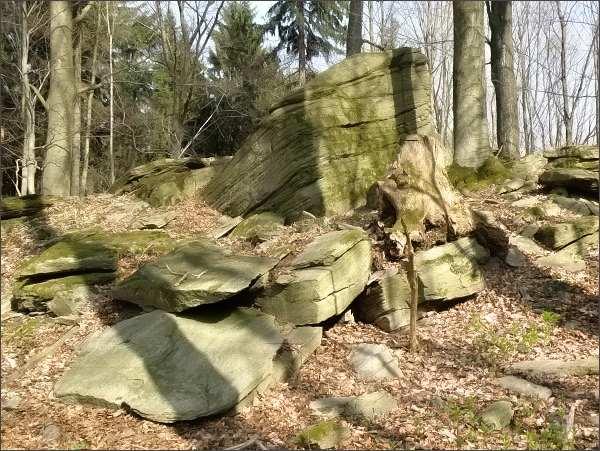 Přírodní památka Míchovec